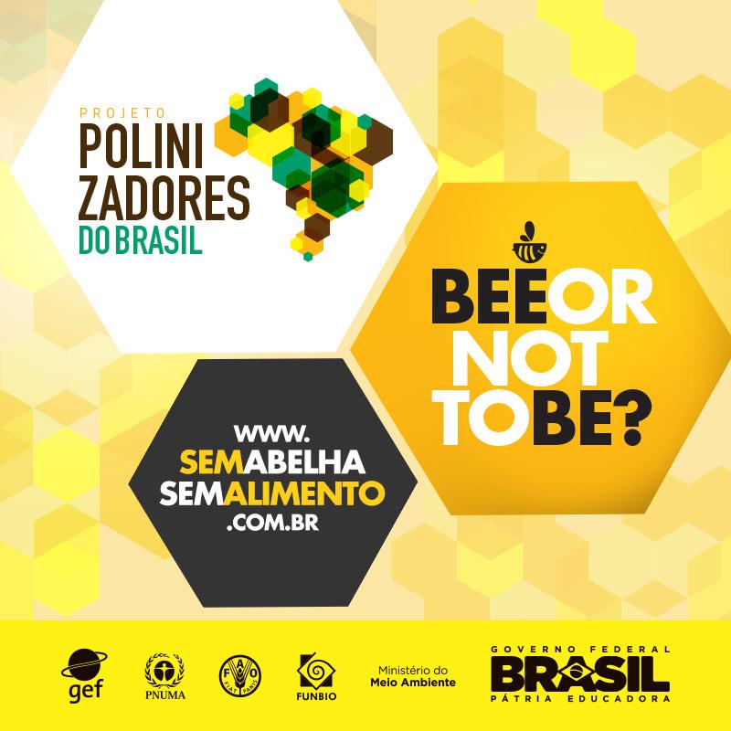 Parceria Polinizadores do Brasil e Bee or not to be
