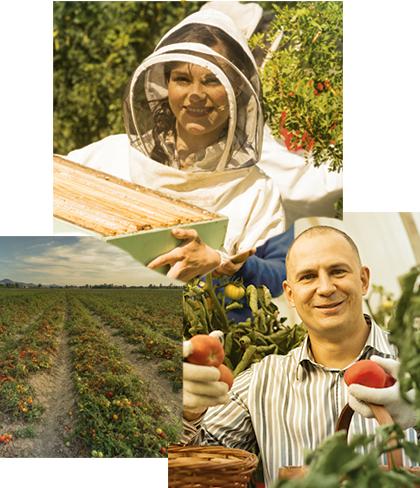 foto-apicultor-agricultor