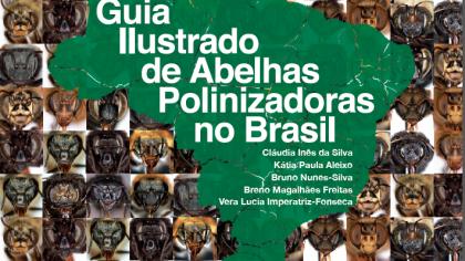 Polinizadores do Brasil