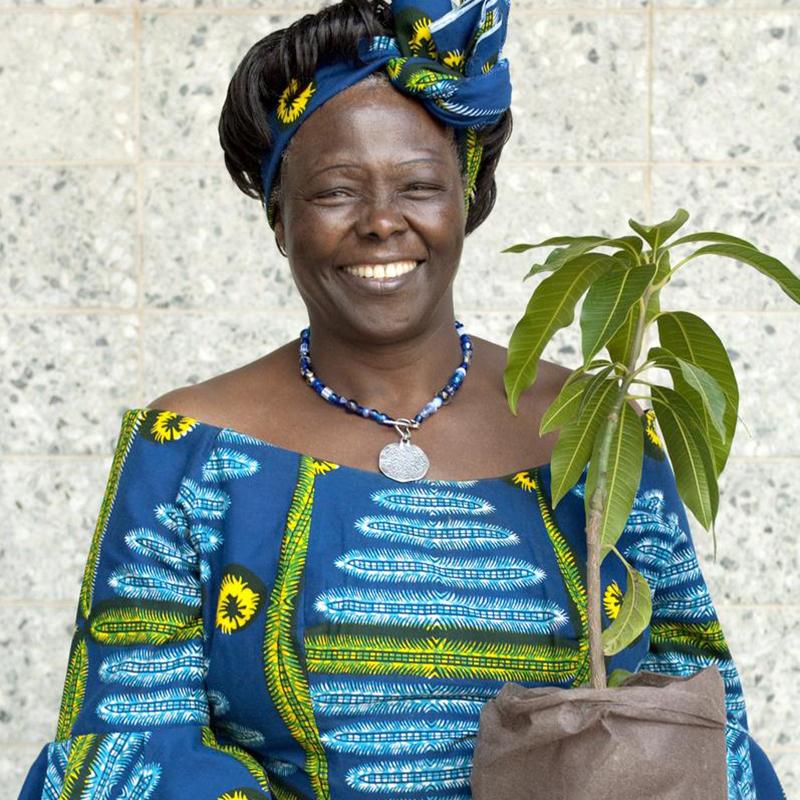9 Wangari Maathai
