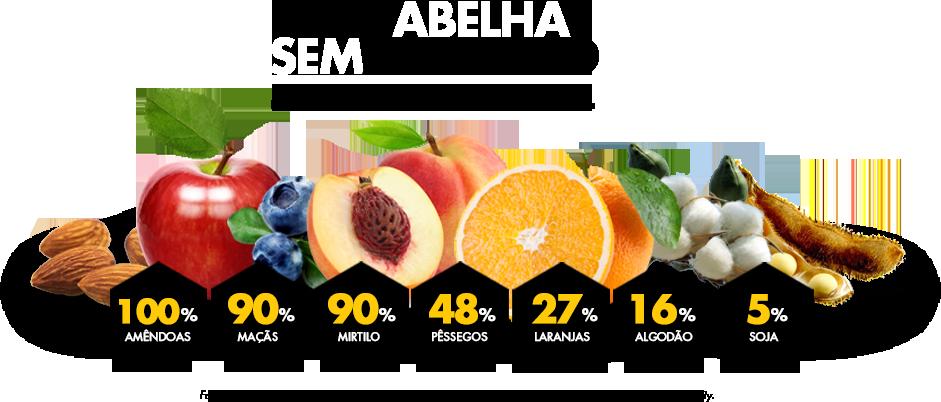 tela3-frutas-br